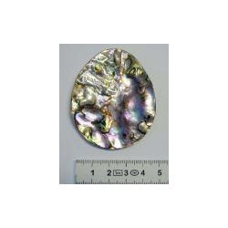 Shell - Abalone free-form pendant. approx  65 x45mm. 1pcs